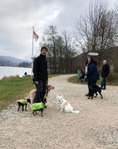 Hundewanderung in Houbirg in der fränkischen Schweiz.